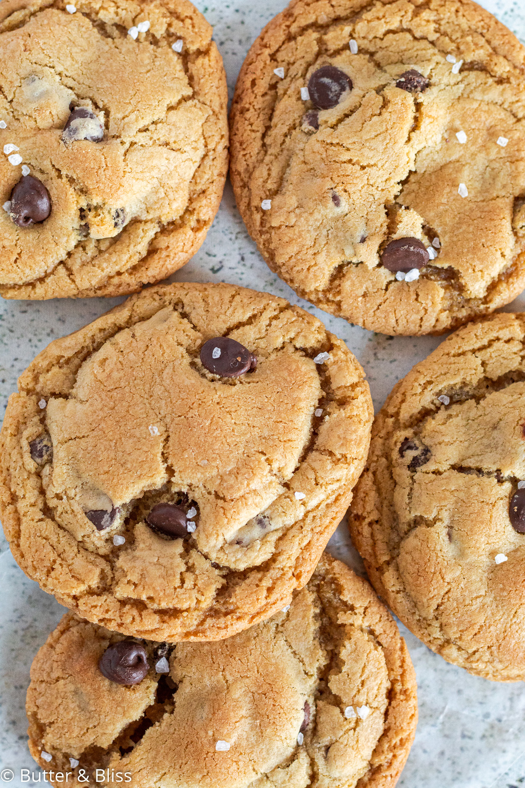 A tray full of chocolate chip cookies