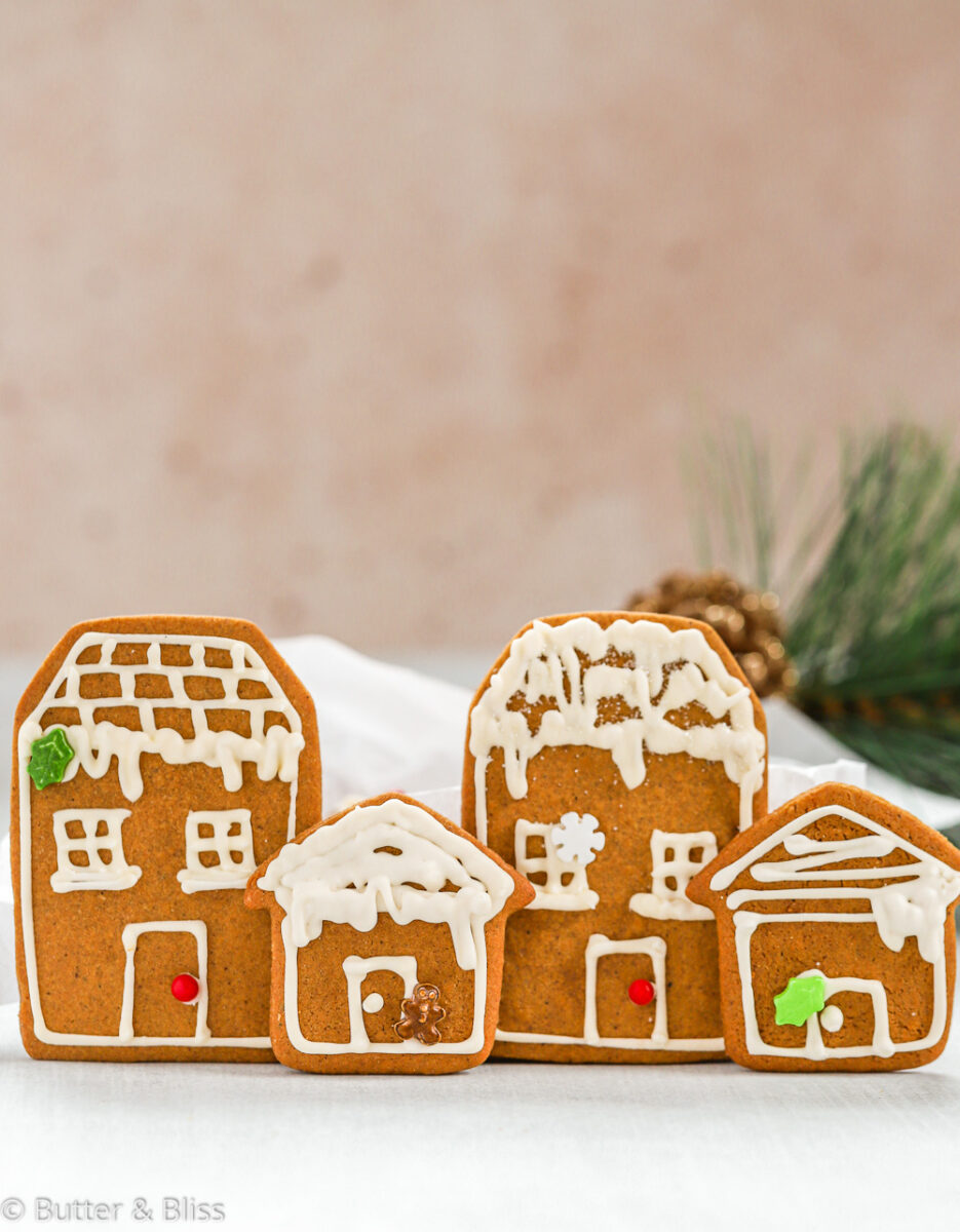 Gingerbread holiday houses