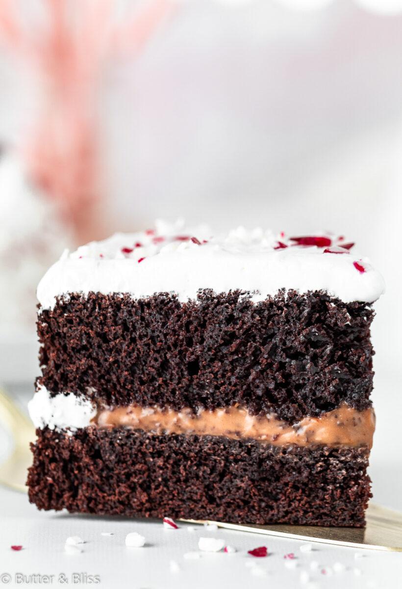 Perfect slice of Peppermint Mocha Layer Mini Cake