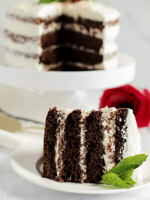 Chocolate cake slice with four layers