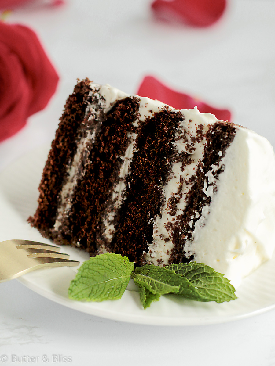 Slice of chocolate cake with frosting