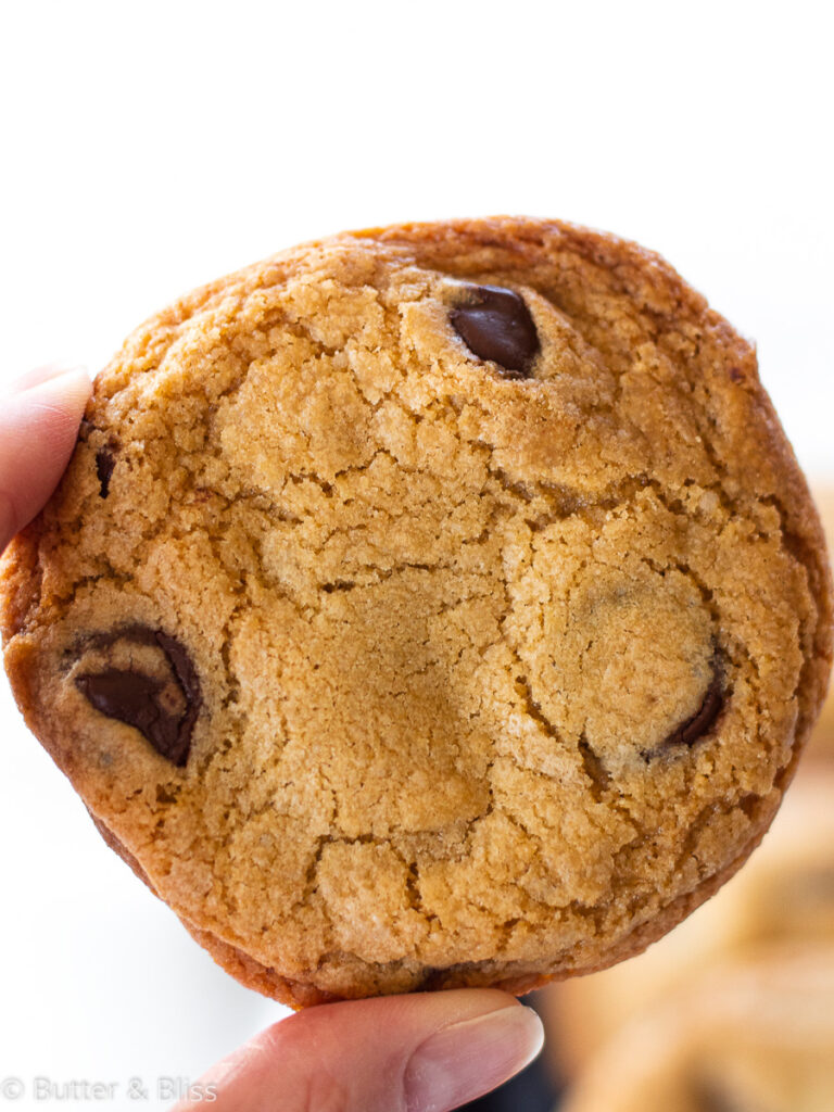 Single chocolate chip cookie being held up
