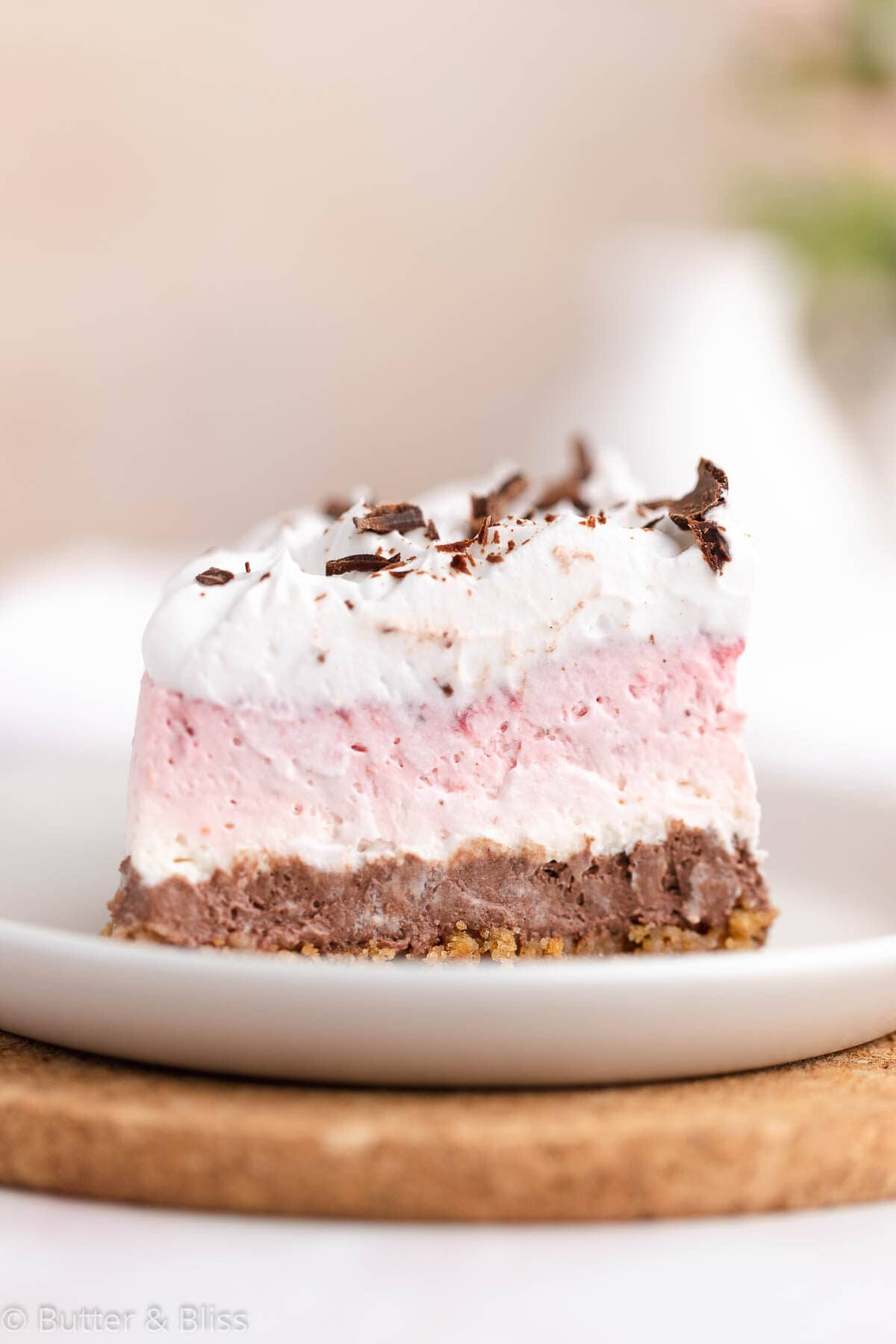 Side close-up view of a neapolitan cheesecake slice